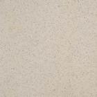 Taurus Granit напольная  19,8x19,8